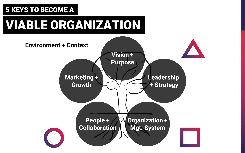 hgn_viable_organization